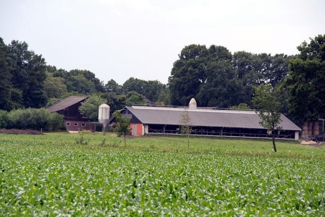 ausbildung landwirt landwirtin ausbildungswege ausbildungsplan landwirtschaftskammer. Black Bedroom Furniture Sets. Home Design Ideas