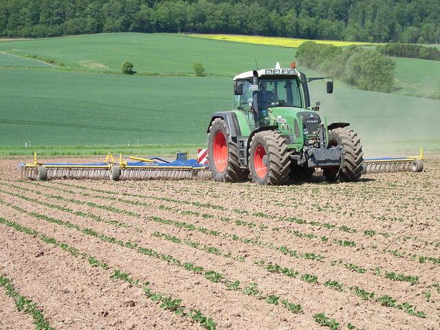 Mechanische unkrautregulierung im sojabohnenanbau - Gartenbau beschattet ...
