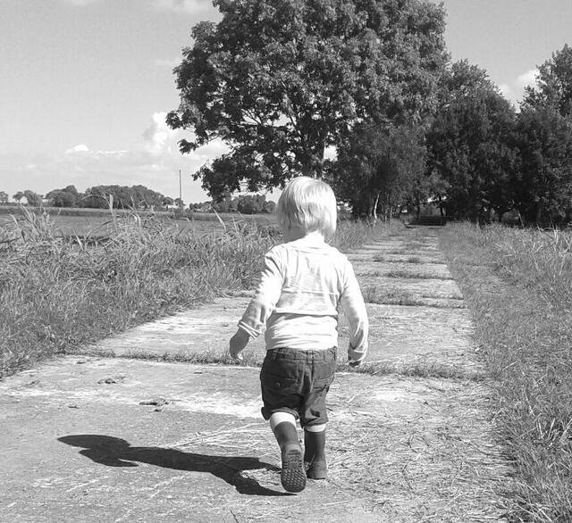 Kinderzuschlag Höchsteinkommen